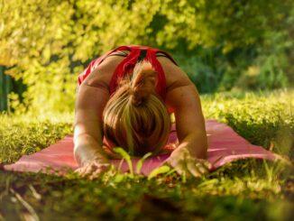 Yoga Basics für Anfänger