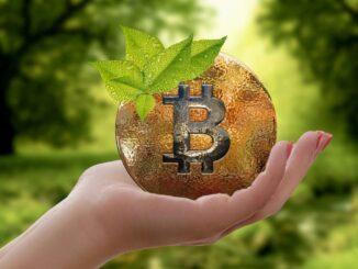 Krypto kann nachhaltig sein